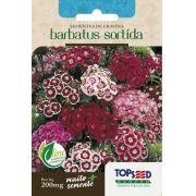 Sementes de Cravina Barbatus Sortida 200mg - Topseed Linha Tradicional Flores