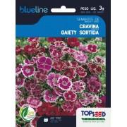 Sementes de Cravina Gaiety Sortida 3g - Topseed Blue Line