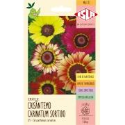 Sementes de Crisântemo Carinatum Sortido - Isla Multi