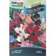 Sementes de Ervilha-de-Cheiro Spencer Sortida - Topseed Linha Tradicional Flores