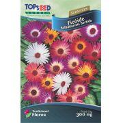 Sementes de Ficóide Bellidiformis Sortido - Topseed Linha Tradicional Flores