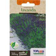 Sementes de Lavanda - Topseed