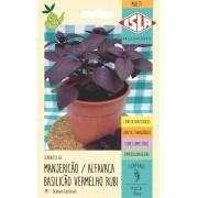 Sementes de Manjericão Alfavaca Basilicão Vermelho Rubi 100mg - Isla Multi