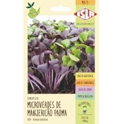 Sementes de Manjericão Padma Microverdes 500mg - Isla Multi