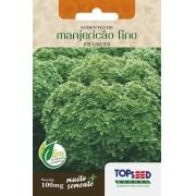 Sementes de Manjericão Verde Fino Francês 100mg - Topseed Linha Tradicional