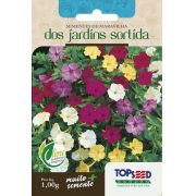 Sementes de Maravilha dos Jardins Sortida 1g - Topseed Linha Tradicional