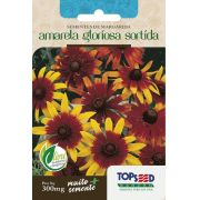 Sementes de Margarida Amarela Gloriosa Sortida 300mg - Topseed Linha Tradicional Flores