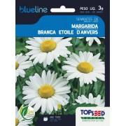 Sementes de Margarida Branca Etoile Danvers 3g - Topseed Blue Line