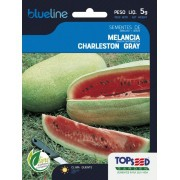 Sementes de Melancia Charleston Gray 5g - Topseed Blue Line