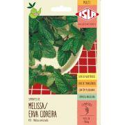 Sementes de Melissa / Erva Cidreira - Isla Multi