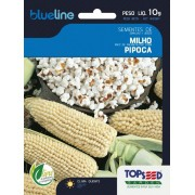 Sementes de Milho Pipoca 10g - Topseed Blue Line