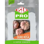 Sementes de Mini Abóbora Ouro Rosa Envelope com 50 Sementes - Isla Pro