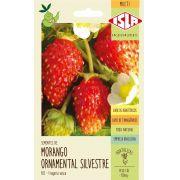 Sementes de Morango Ornamental Silvestre 130mg - Isla Multi