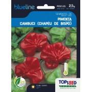 Sementes de Pimenta Cambuci (Chapéu de Bispo) 2,5g - Topseed Blue Line