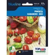 Sementes de Pimenta Habanero Red 2,5g - Topseed Blue Line