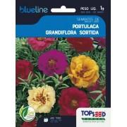 Sementes de Portulaca Grandiflora Sortida 1g - Topseed Blue Line