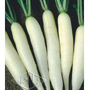 Sementes de Rabanete Branco comprido 4,50g - Isla Multi