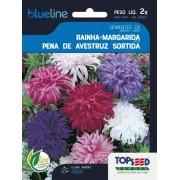 Sementes de Rainha Margarida Pena de Avestruz Sortida 2g - Topseed Blue Line