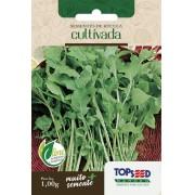Sementes de Rúcula Cultivada 1g - Topseed Linha Tradicional