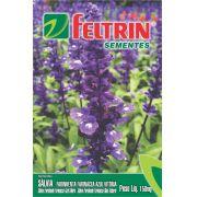 Sementes de Sálvia Farinhenta Farinácea Azul Vitória 150mg - Feltrin Linha Flores