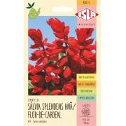Sementes de Sálvia Splendens Anã / Flor-de-Cardeal - Isla Multi