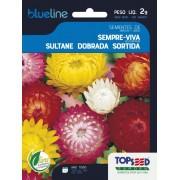 Sementes de Sempre Viva Sultane Dobrada Sortida 2g - Topseed Blue Line
