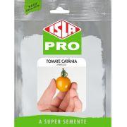 Sementes de Tomate Catânia Orange (Híbrido) Envelope com 10 sementes - Isla Pro