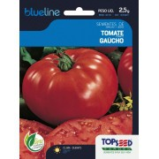 Sementes de Tomate Gaúcho 2,5g - Topseed Blue Line
