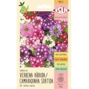 Sementes de Verbena Híbrida Camaradinha Sortida - Isla Multi