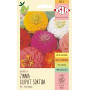 Sementes de Zinnia Liliput Sortida 300mg - Isla Multi