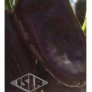 Sementes importadas de Pimenta Hot Chocolate Híbrida Envelope com 50 Sementes - Isla Pro