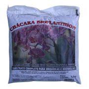 Substrato completo para Orquídeas e Bromélias 1,5 kg Bioplanthion