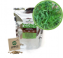 Kit para Plantio de Microverdes de Cenoura Radesh Green Leaf