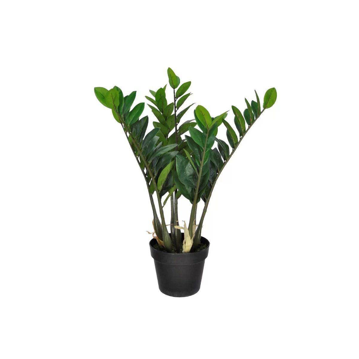 Árvore Zamioculca artificial verde com pote X7 64cm 23884001F