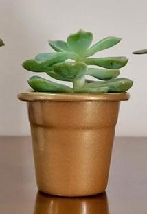 Cachepô de Alumínio Soleil N° 06 Dourado 6cm x 7,5cm