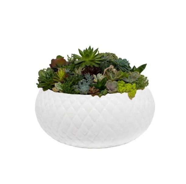 Cachepô de Cerâmica Branco Botanicals Boca Larga Grande 11cm x 24cm - 5716