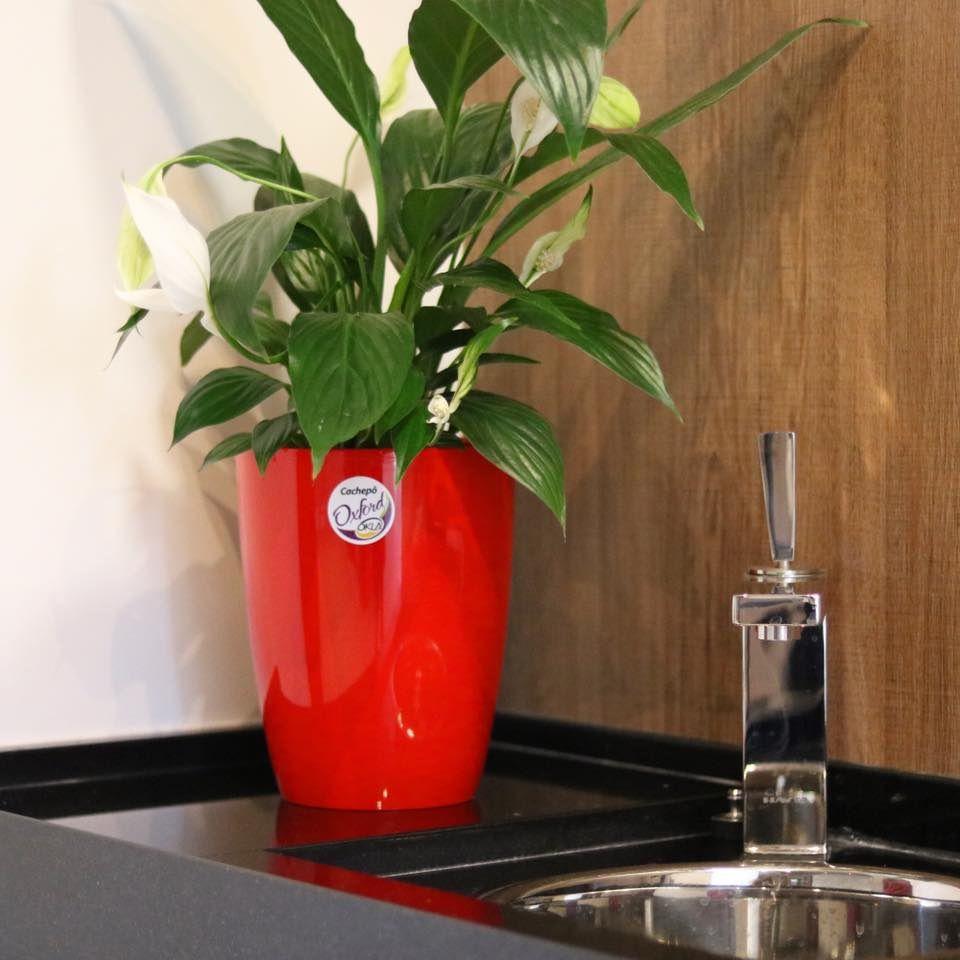 Cachepô Redondo Oxford Vermelho 19,5cm x 15cm