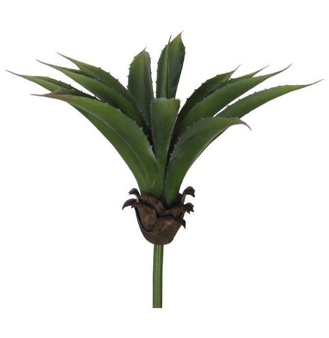 Folhagem Agave X12 Verde 26 cm 27976001