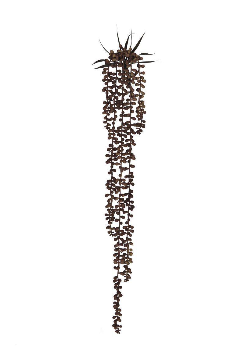 Folhagem artificial Sedum Suculenta de Pendurar X5 Marrom Outono 72cm - 20036002