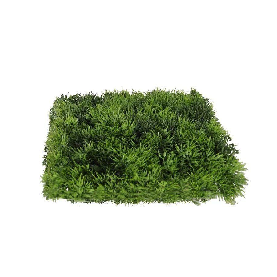 Folhagem Grama artificial PLT Verde 25 cm x 25 cm - 00931001
