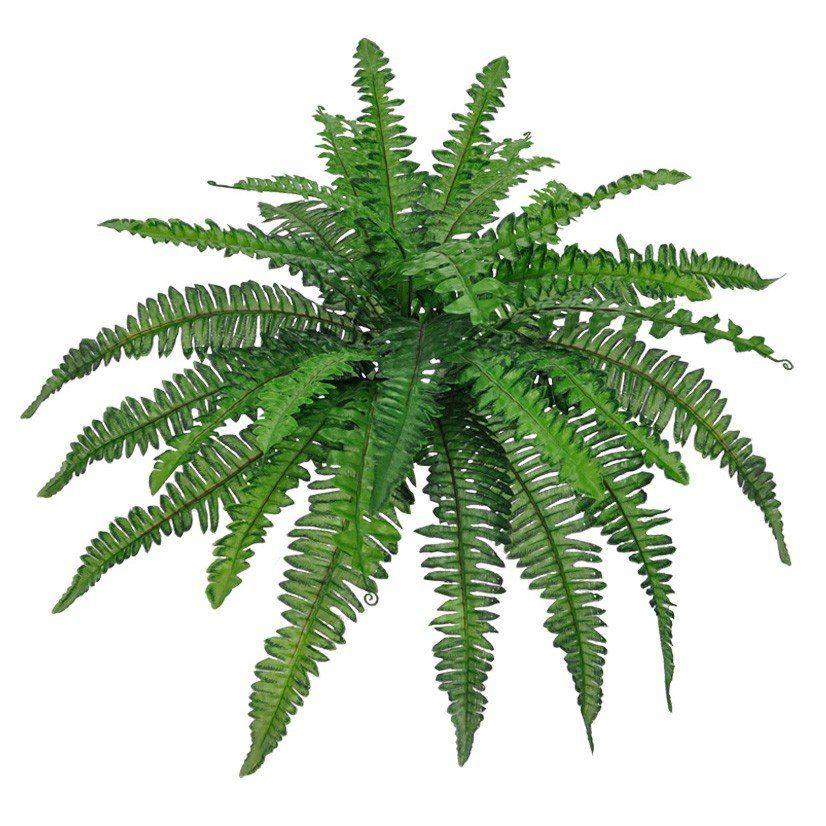 Folhagem Samambaia artificial X30 Verde 40cm - 28255001