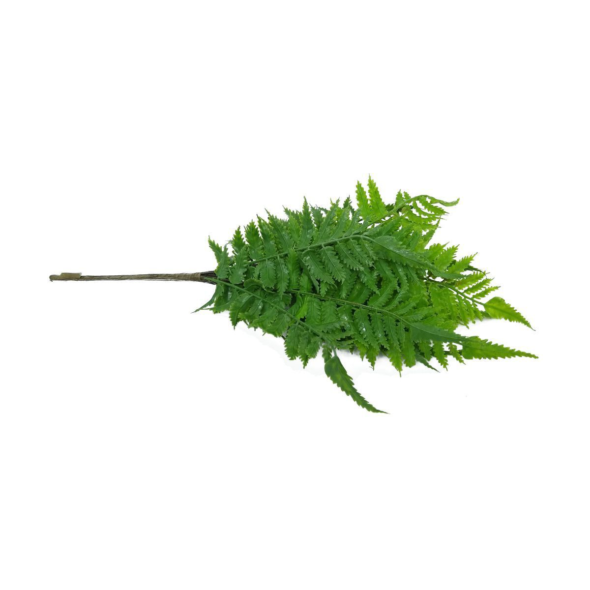 Folhagem Samambaia PLT X14 Verde 44cm - 40856001