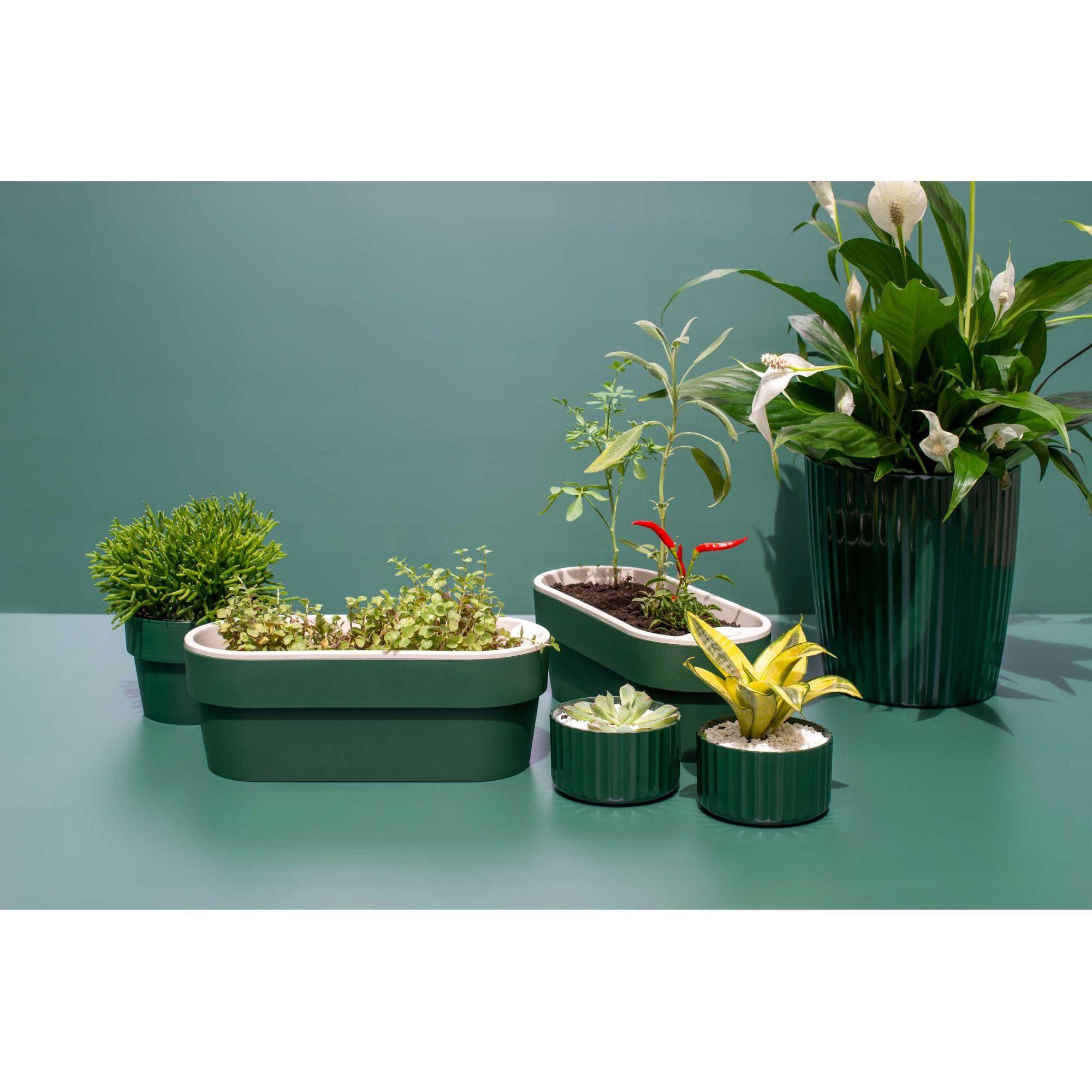 Hortinha Autoirrigável Verde Botânico Linha Plantar < Ou >