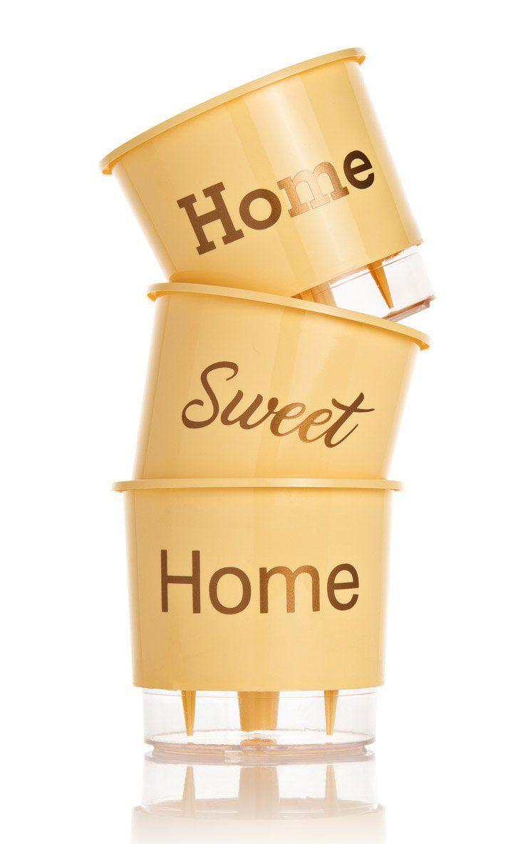 Kit 3 Vasos Autoirrigáveis Pequenos N02 12 cm x 11 cm Home Sweet Home Pêssego