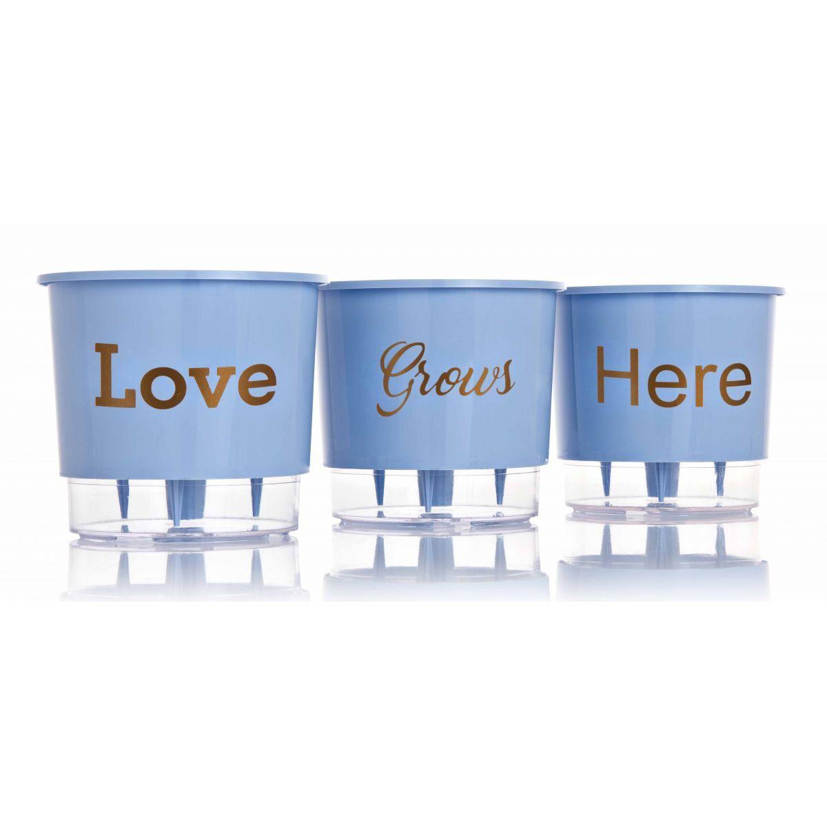 Kit 3 Vasos Autoirrigáveis Pequenos N02 12 cm x 11 cm Love Grows Here Azul Serenity