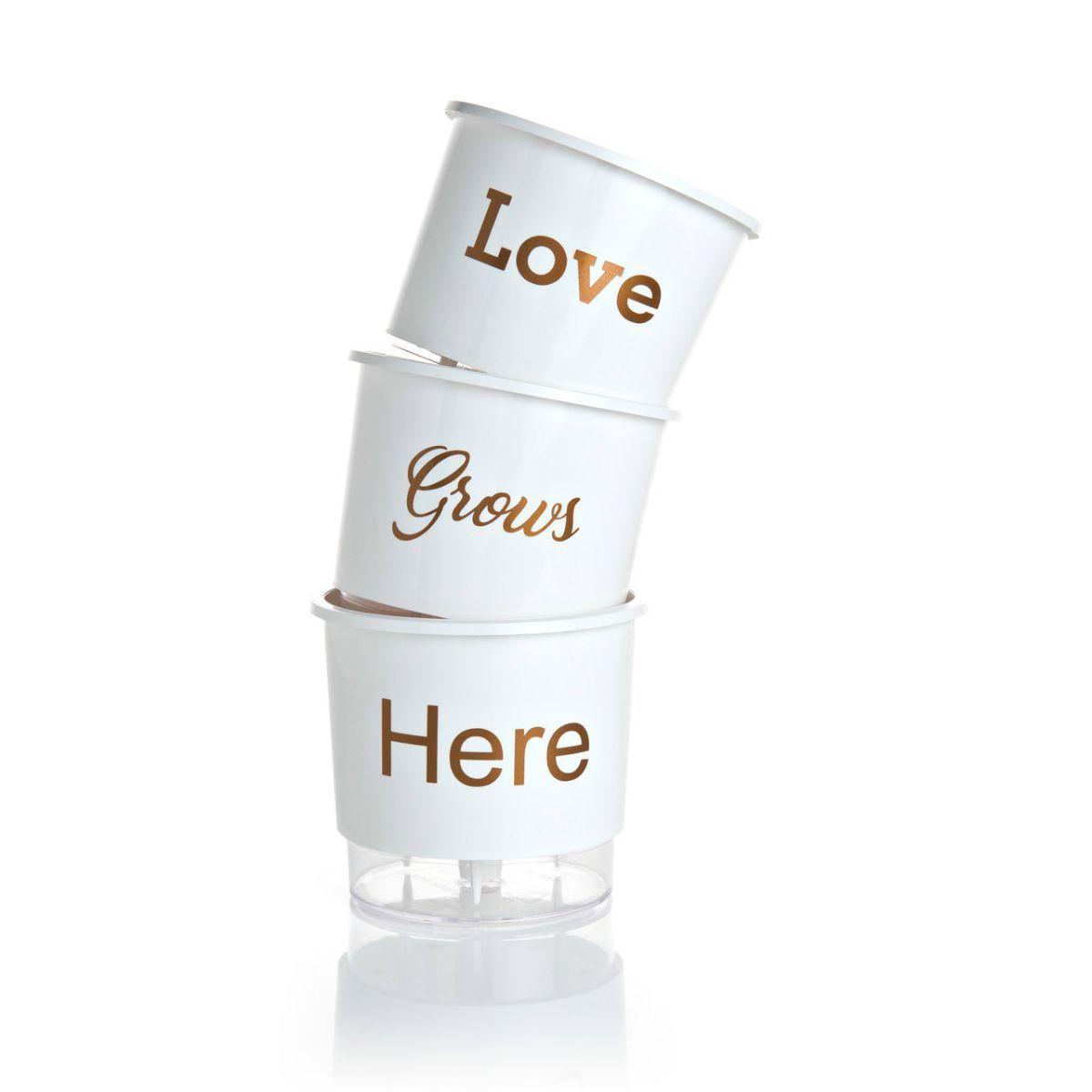 Kit 3 Vasos Autoirrigáveis Pequenos N02 12 cm x 11 cm Love Grows Here Branco