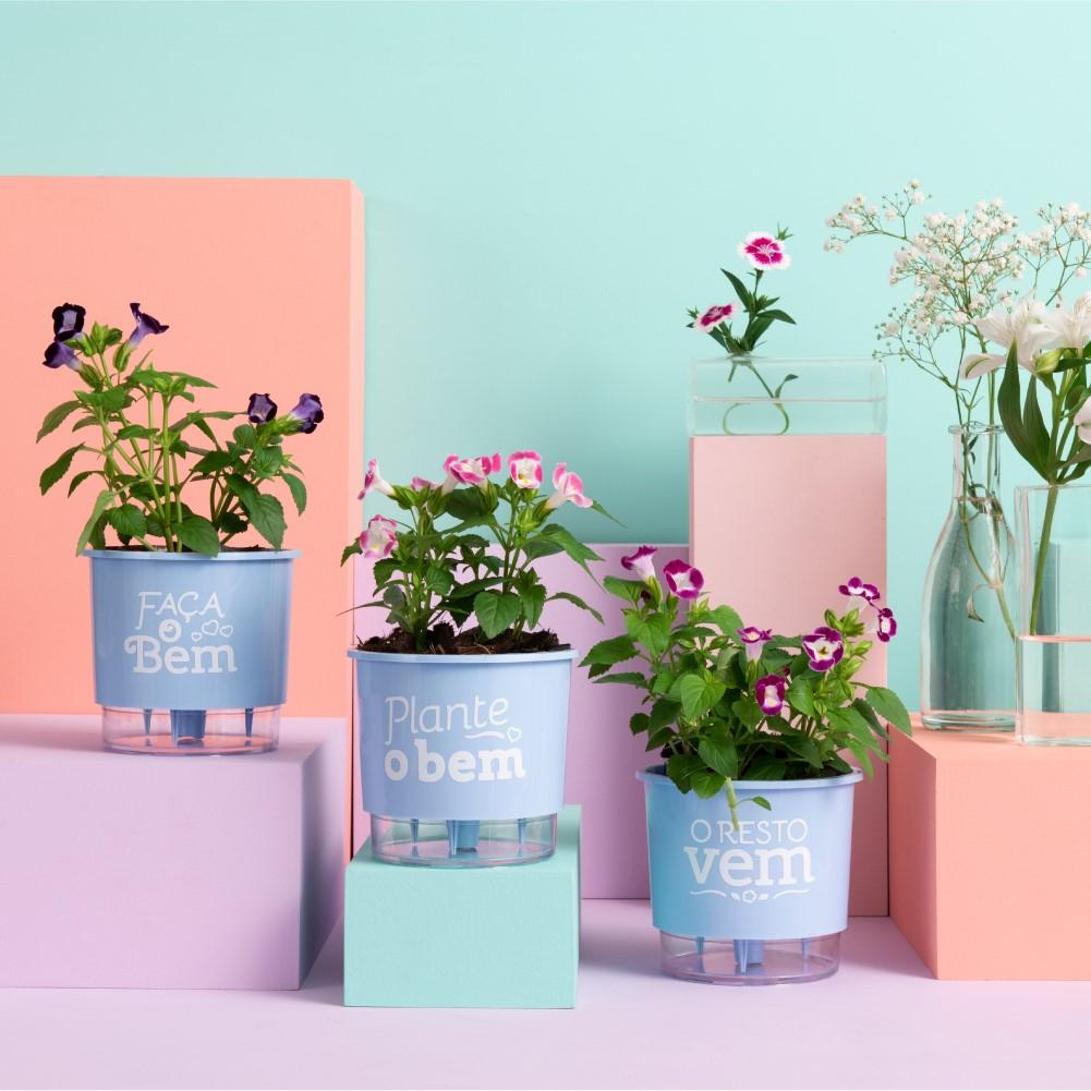 Kit 3 Vasos Autoirrigáveis Pequenos N02 12 cm x 11 cm Plante o Bem Azul Serenity