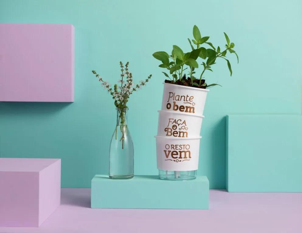 Kit 3 Vasos Autoirrigáveis Pequenos N02 12 cm x 11 cm Plante o Bem Branco