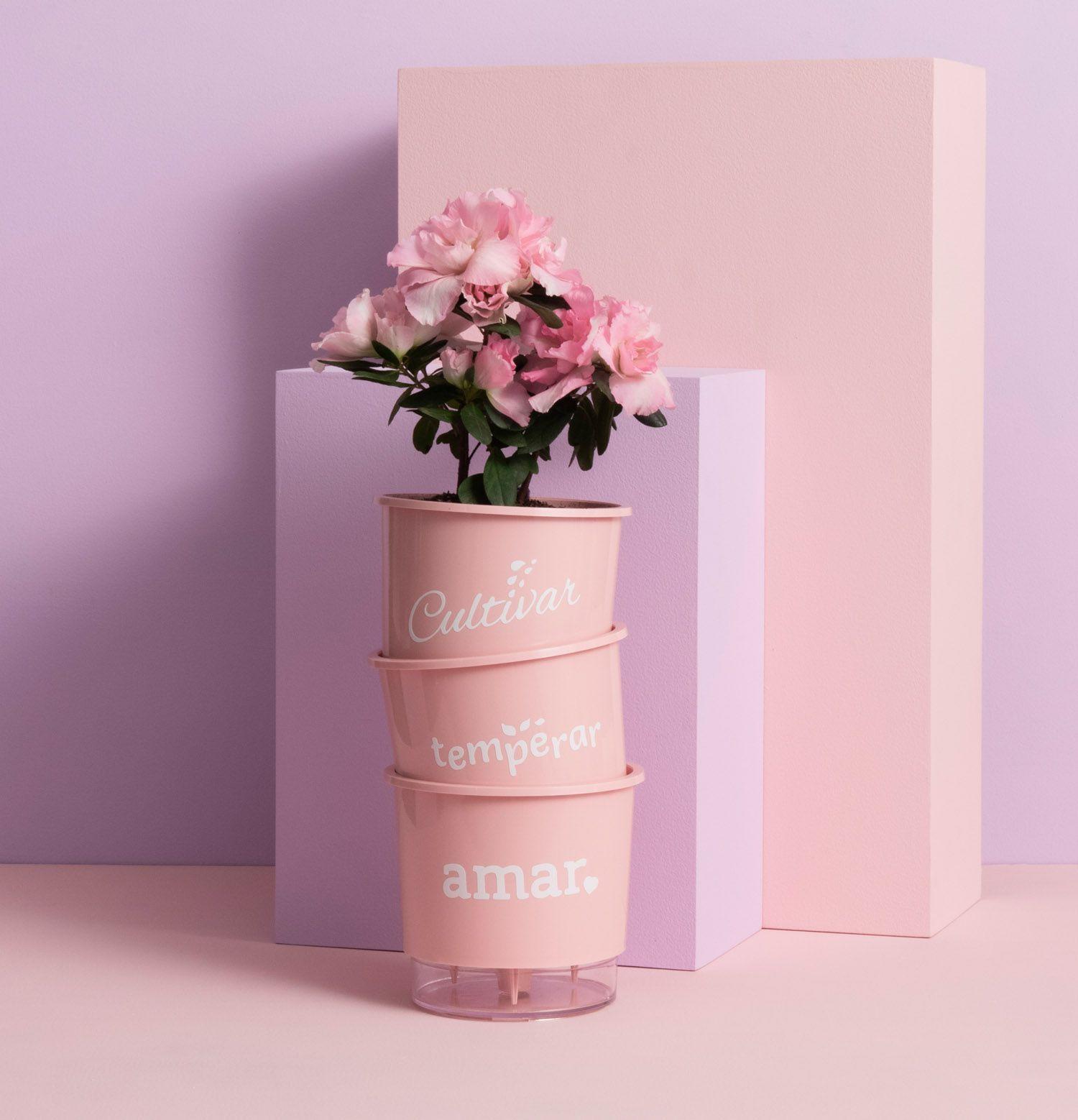 Kit 3 Vasos Autoirrigáveis Pequenos N02 12cm x 11cm Cultivar Temperar e Amar Rosa
