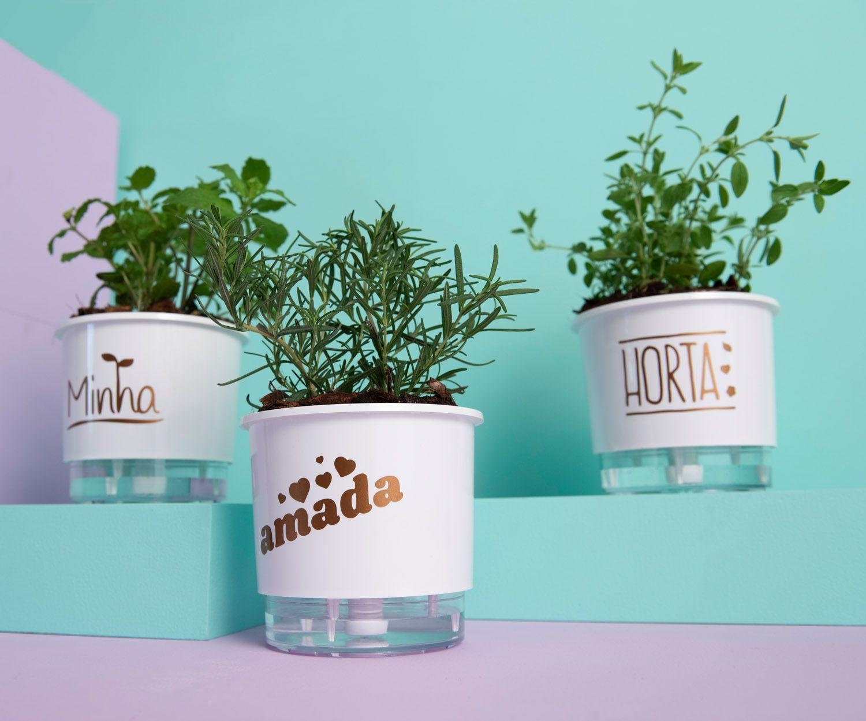 Kit 3 Vasos Autoirrigáveis Pequenos N02 12cm x 11cm Minha Amada Horta Branco